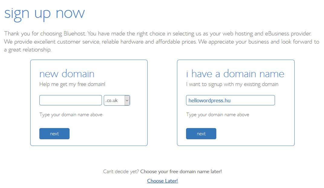 bluehost domain név megadása